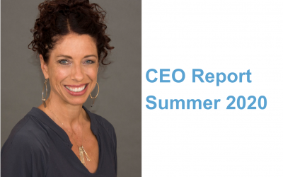 CEO Report Summer 2020